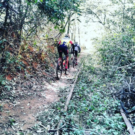 Swaziland Mountain Biking Tour