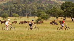 Mountain Bike Tour From Mlilwane To Mbuluzi Packages