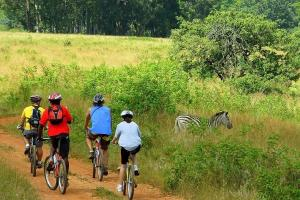 Bike Tour In Swaziland: From Forbes Reef To The Malolotja Nature Reserve Packages